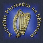 Irish-prison-servie